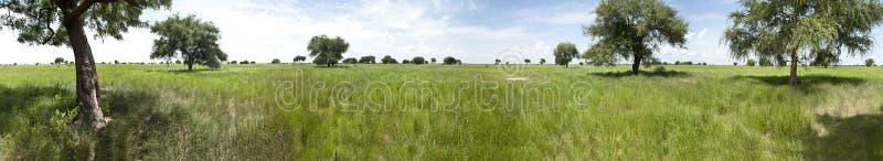 300 degree panorama of South Sudan royalty free stock photos