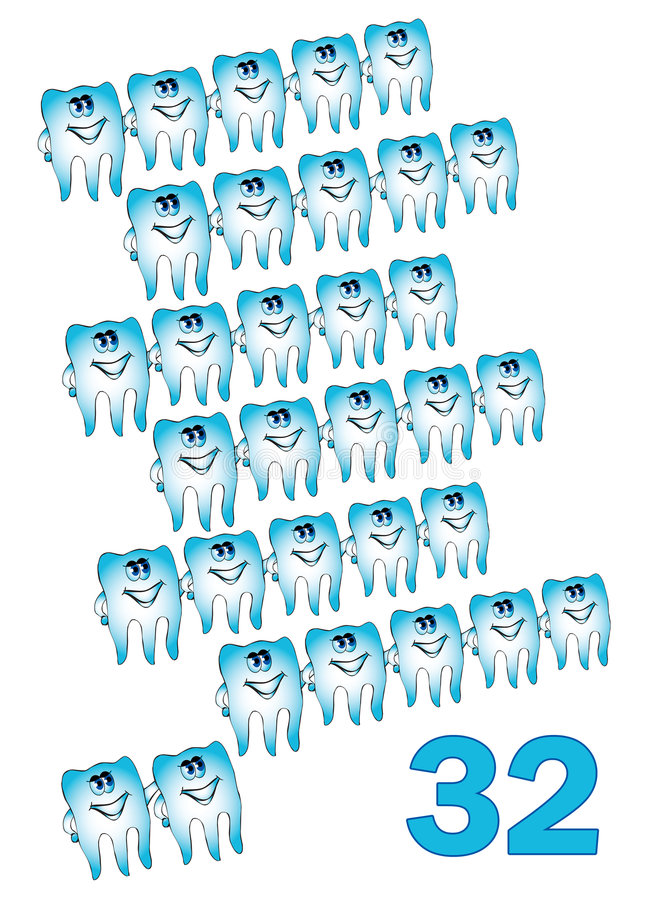 32 teeths бесплатная иллюстрация