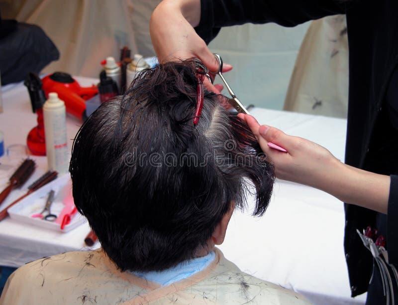 美发师 库存照片