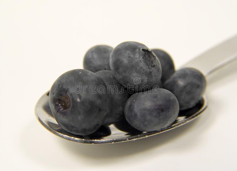 蓝莓一匙 库存照片