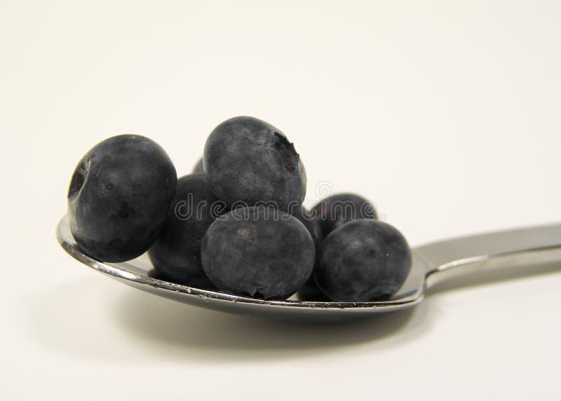 蓝莓匙子 图库摄影