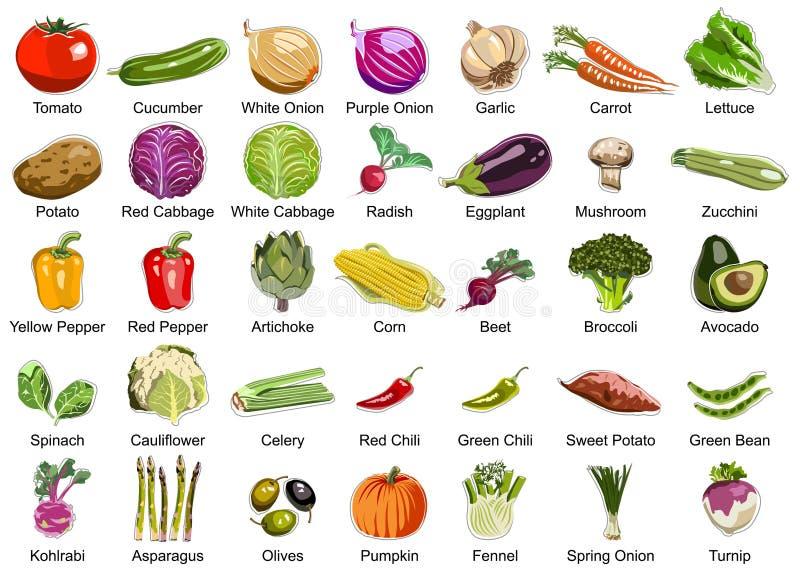 35 grönsaksymboler royaltyfri illustrationer