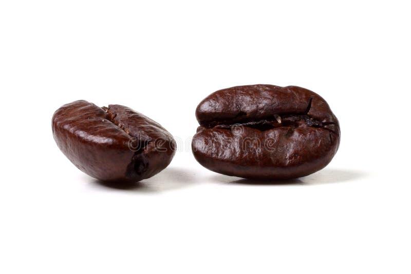 豆Java 免版税图库摄影