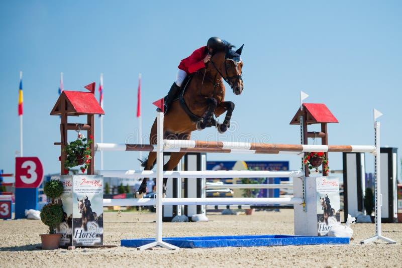 Download 36th Postova Banka-Peugeot Grand Prix Show Jumping Editorial Photography - Image: 26548852