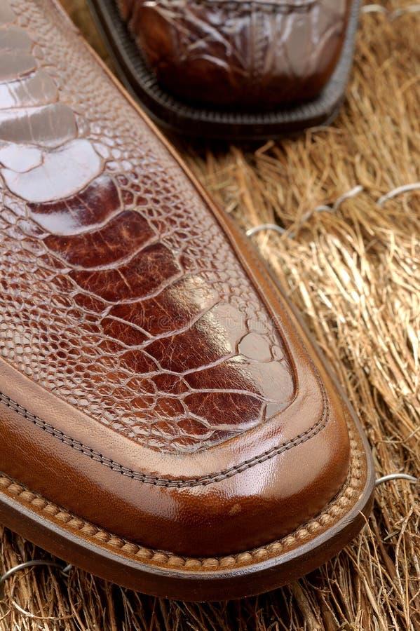 37双豪华鞋子 免版税库存图片