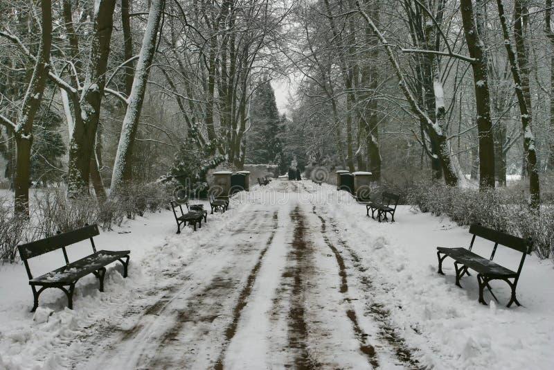 38冬天 库存图片