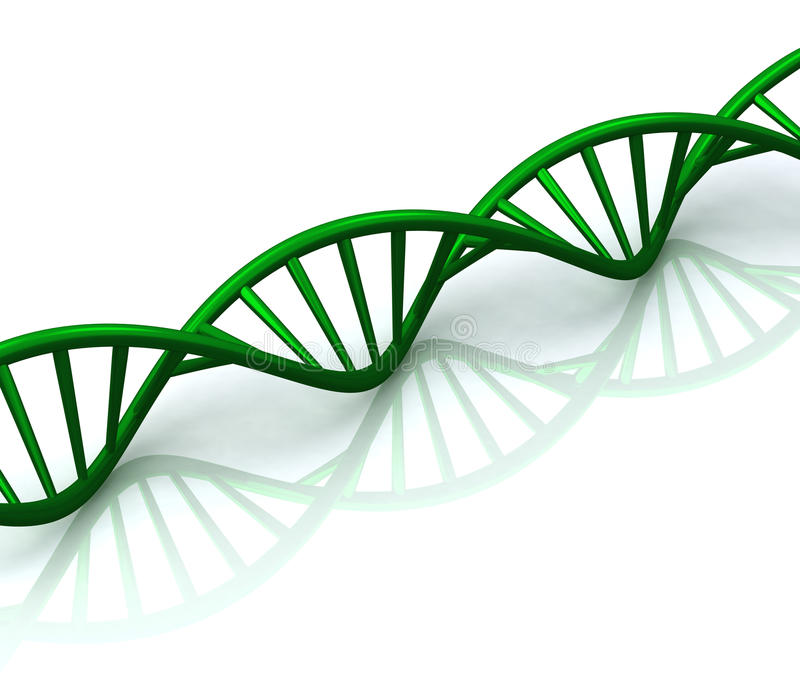 3d抽象脱氧核糖核酸绿色反映螺旋 向量例证