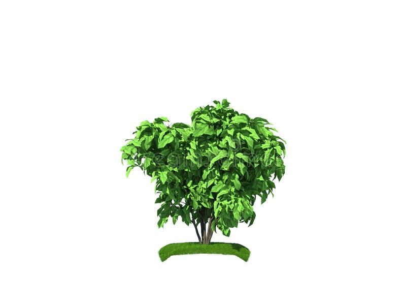 3d灌木使小 库存例证