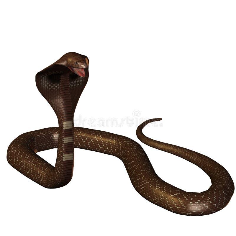 3d眼镜蛇查出的蛇白色 皇族释放例证