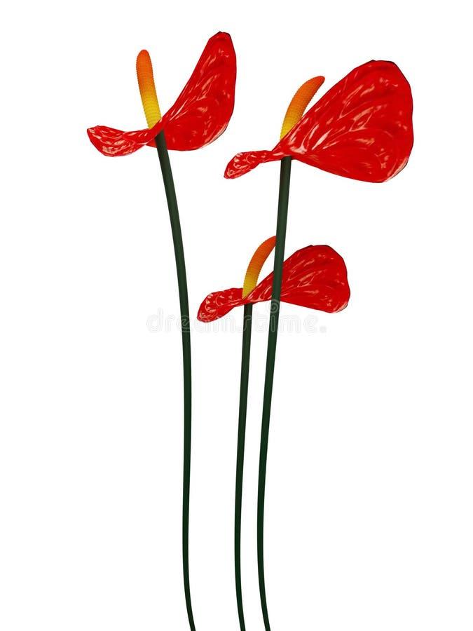 3d红色的floers 向量例证