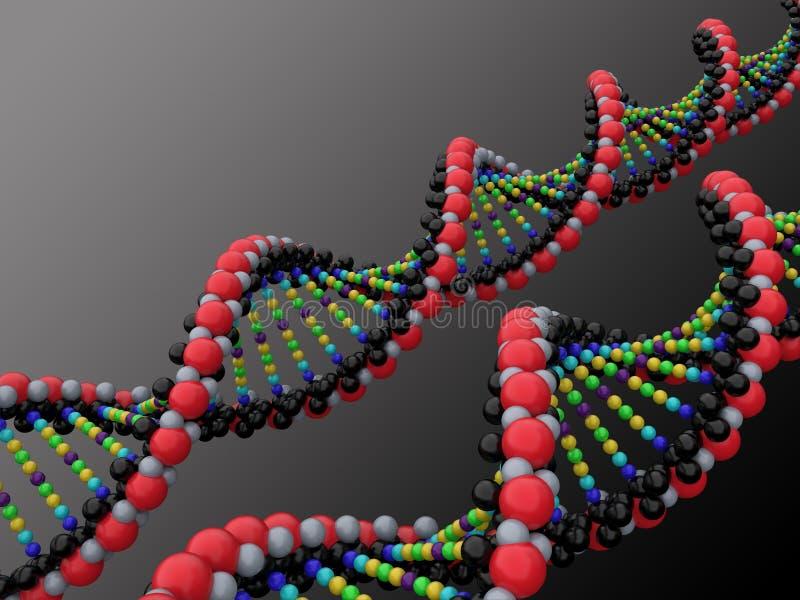 3d脱氧核糖核酸 皇族释放例证