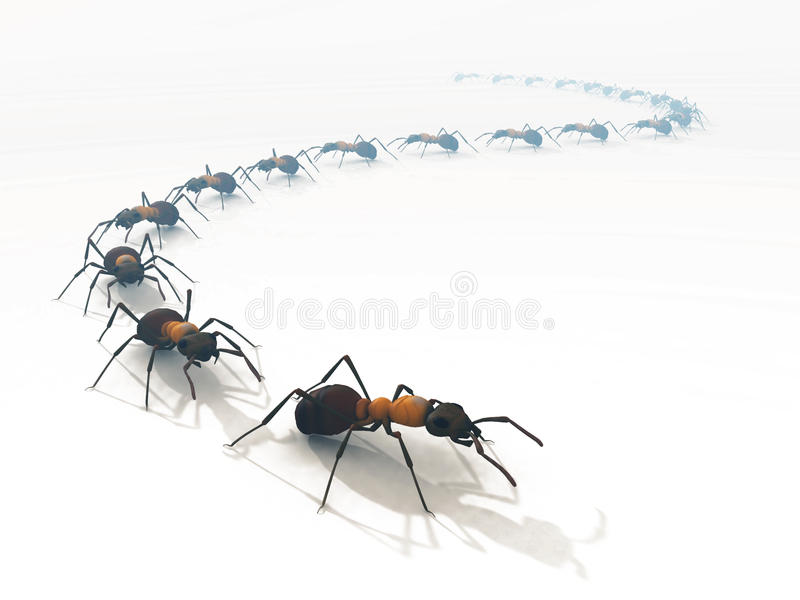 3d ants line queue white isolated royalty free illustration