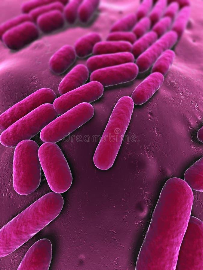 Download 3d bacteria stock illustration. Image of medical, science - 18584109