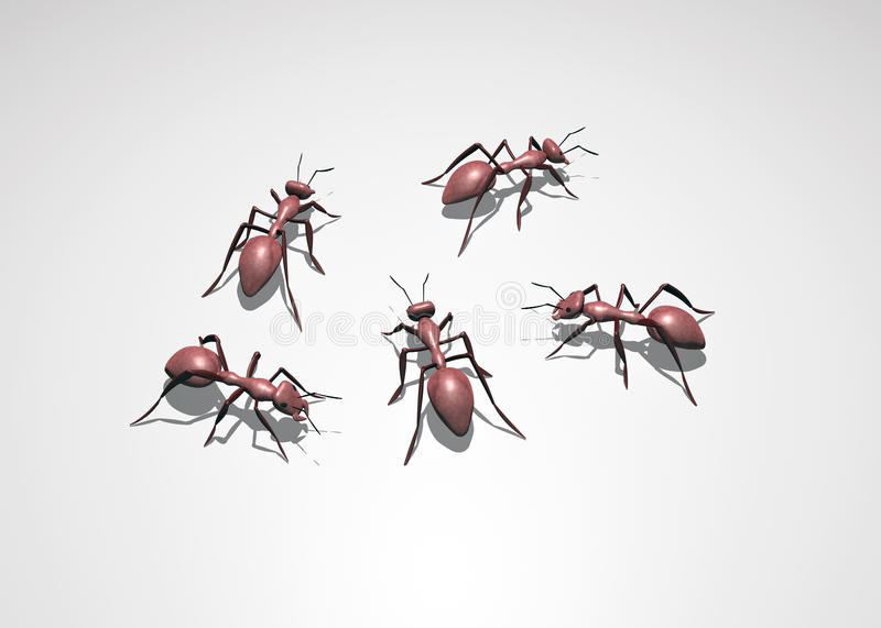 3D Bugs royalty free illustration