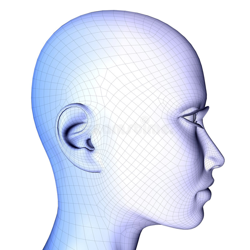 3d cara femenina Wireframe libre illustration