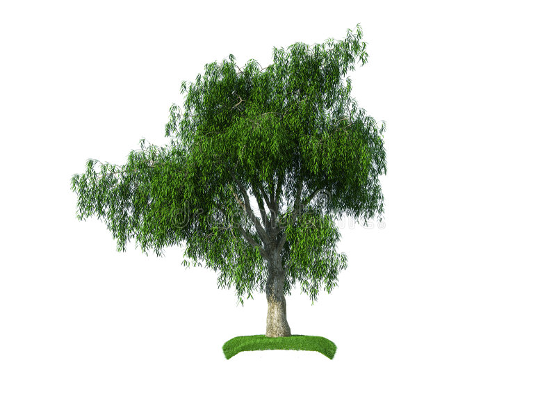 Download 3d crying iva tree stock illustration. Image of leave - 8120550