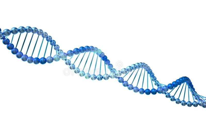 3d DNA. Isolated on white background vector illustration