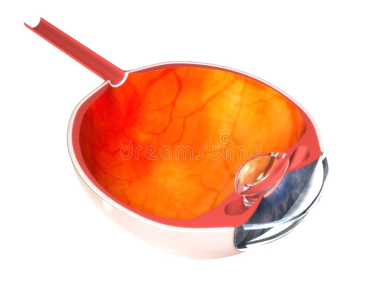 3d eye stock illustration