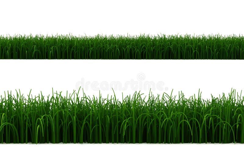 3d graslijn die op wit wordt geïsoleerde