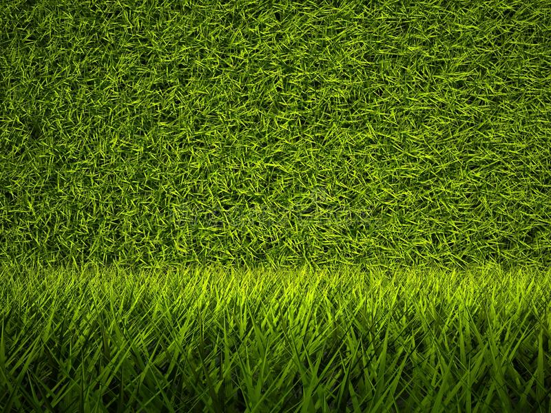 Download 3d Green Grass Texture, Background Stock Illustration - Image: 24445104