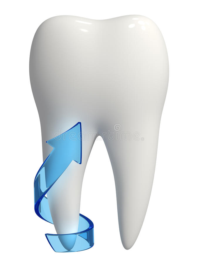 3d healthy white tooth root protection royalty free stock photo