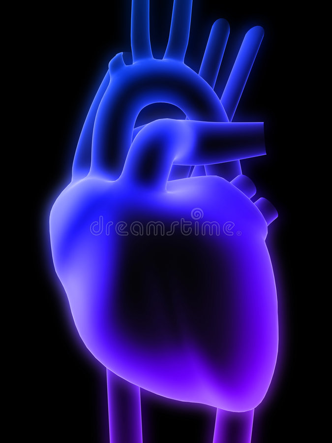 3d heart stock illustration