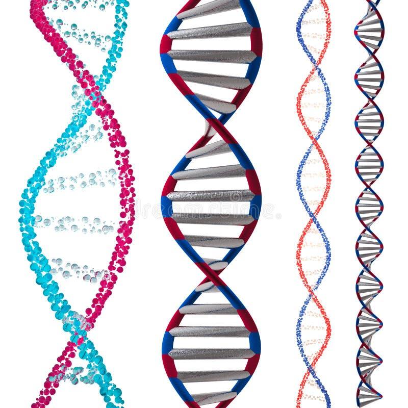 3d model DNA ilustracji