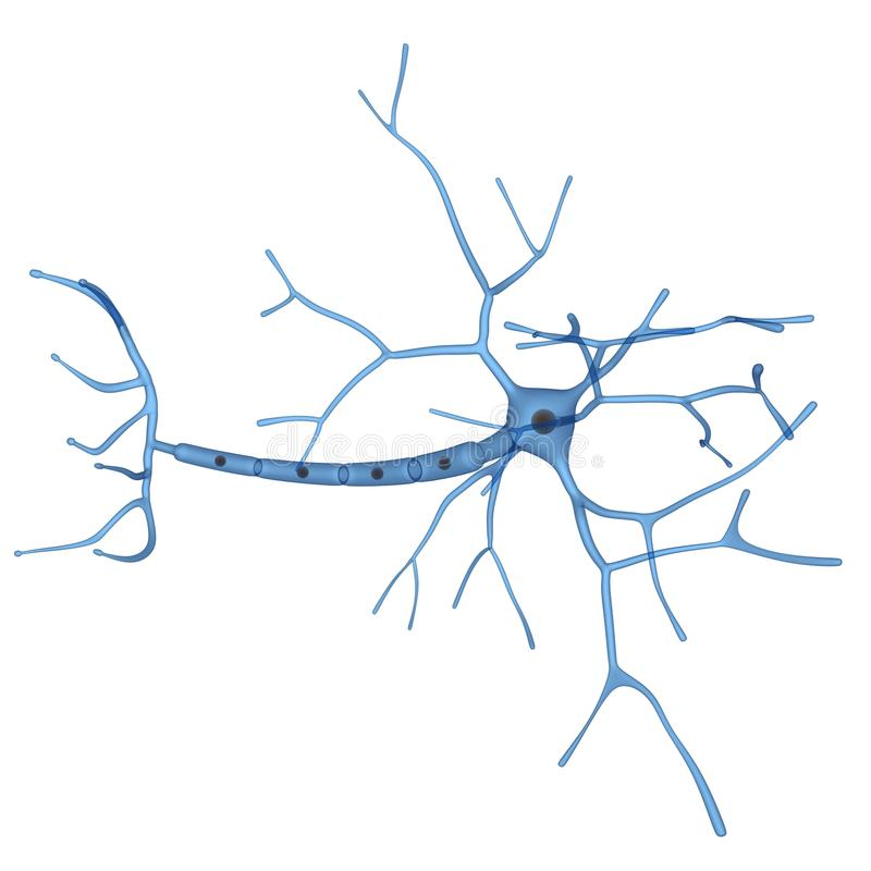 Download 3d Neuronal Cell Stock Image - Image: 19308501