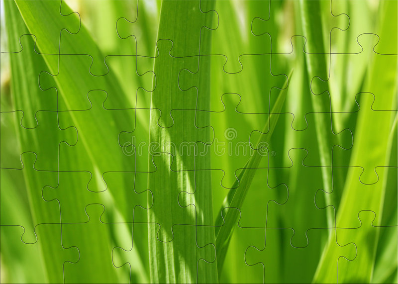 3d puzzles with image spring green grass. Puzzles with image spring green grass royalty free stock photo