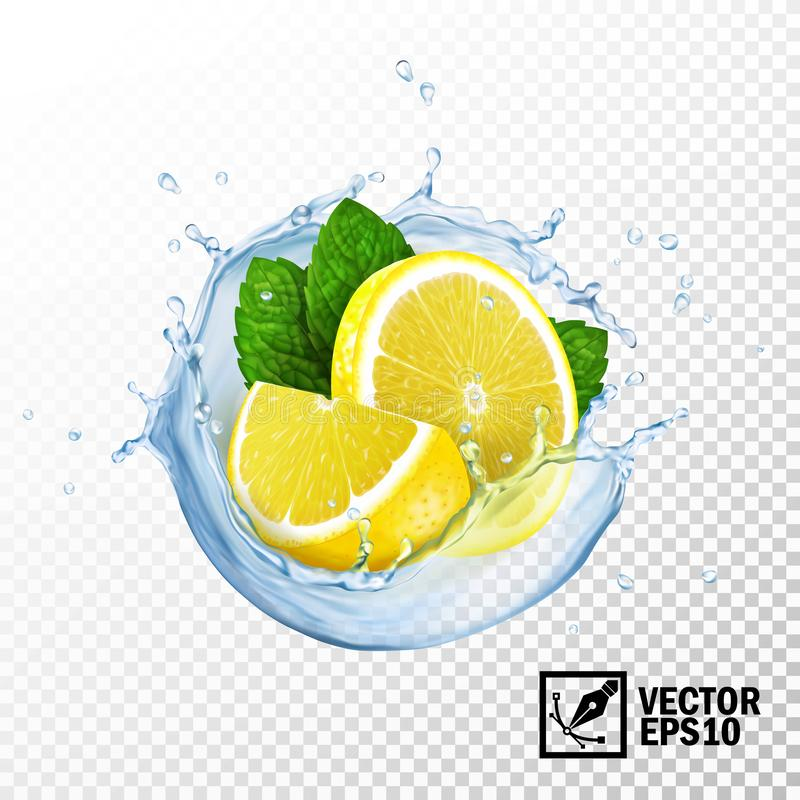 Free 3d Realistic Isolated Vector Slices Lemon And Fresh Mint Leaves In A Splash Of Water Or Tea With Drops Royalty Free Stock Image - 138206866