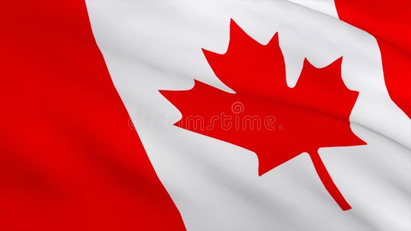 3d rendem de uma bandeira canadense ilustração do vetor