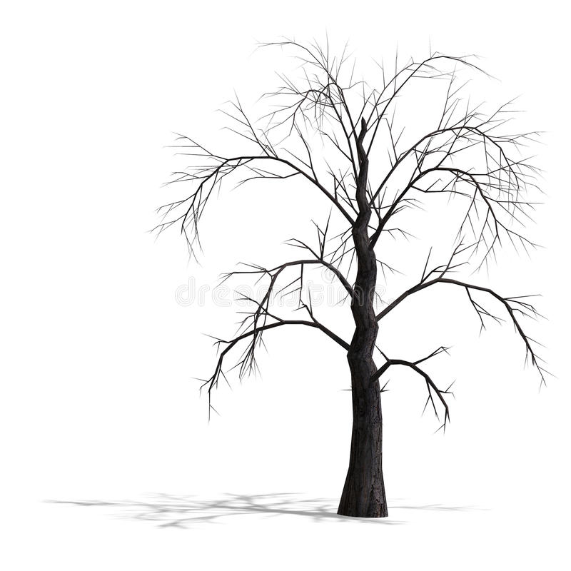 Free 3D Render Of A Dead Tree Without Leafs Stock Photo - 9537940