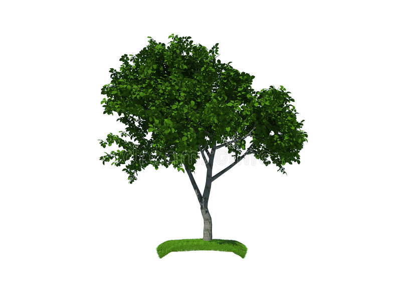 3d render of the small tree vector illustration