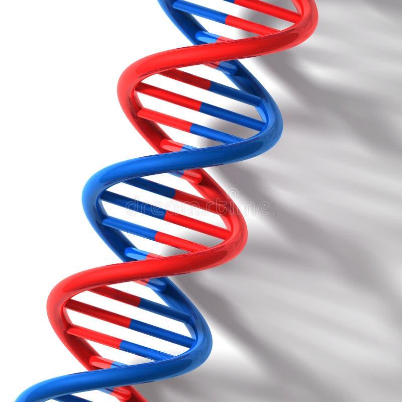 3D rendono la bitmap - modello del DNA illustrazione di stock