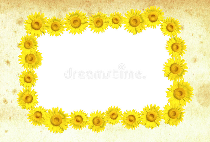 3D sunflower frame stock photos