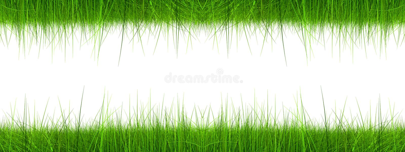3d sztandaru trawy zieleń wysoka rozdzielczość royalty ilustracja