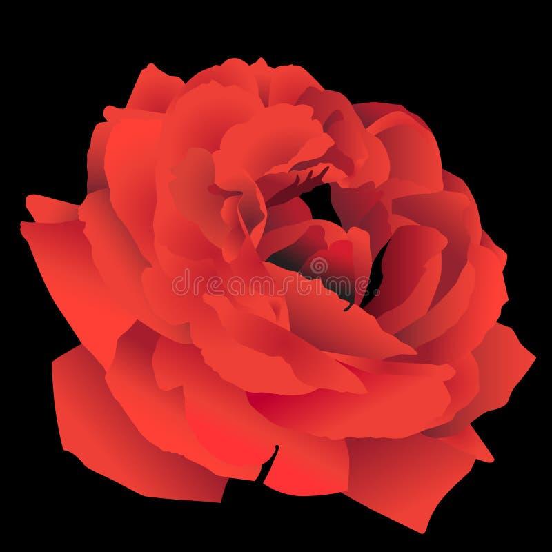3D vermelho Rosa ilustração stock