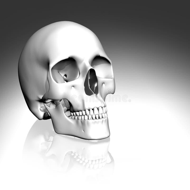 3D white skull vector illustration