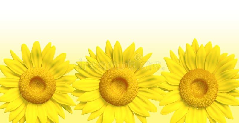 3D zonnebloem royalty-vrije stock afbeelding