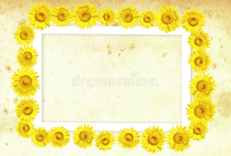 3D zonnebloemframe royalty-vrije stock foto's