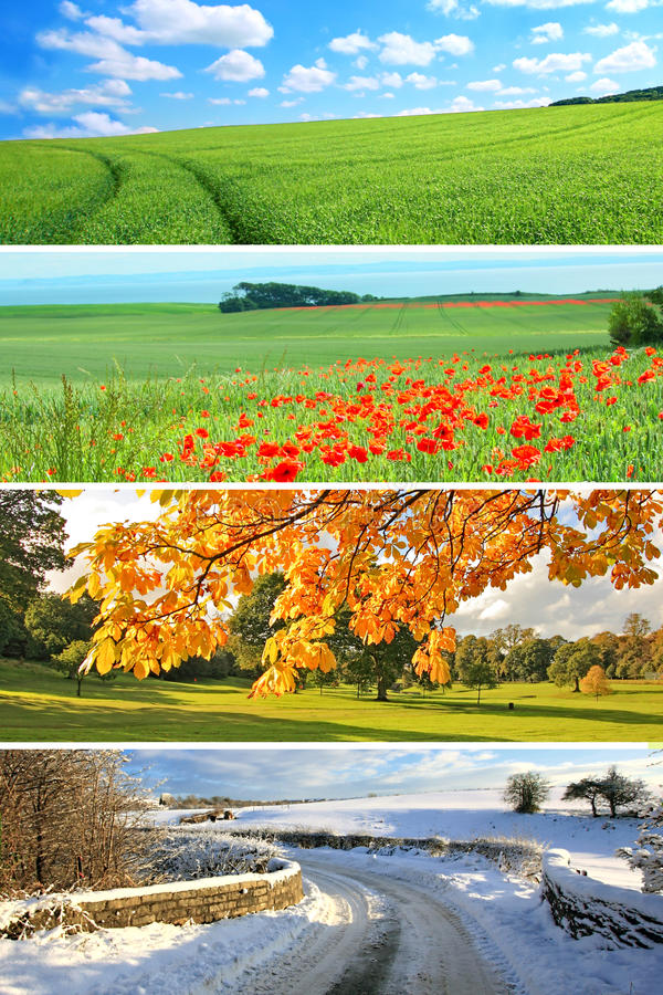 4个收集季节 库存图片