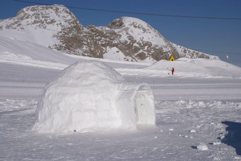 4冰园屋顶的小屋 库存图片