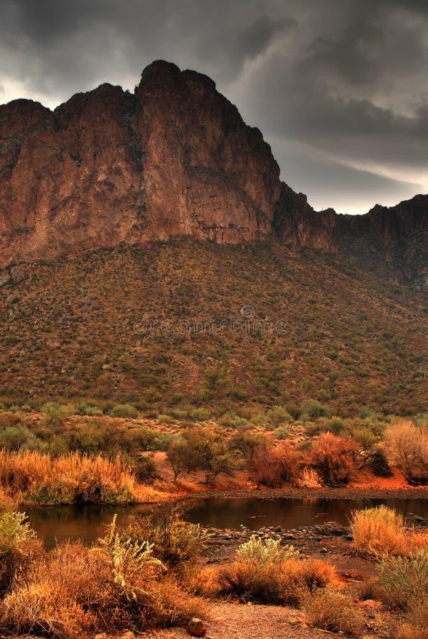 4处理的沙漠风暴 免版税库存照片