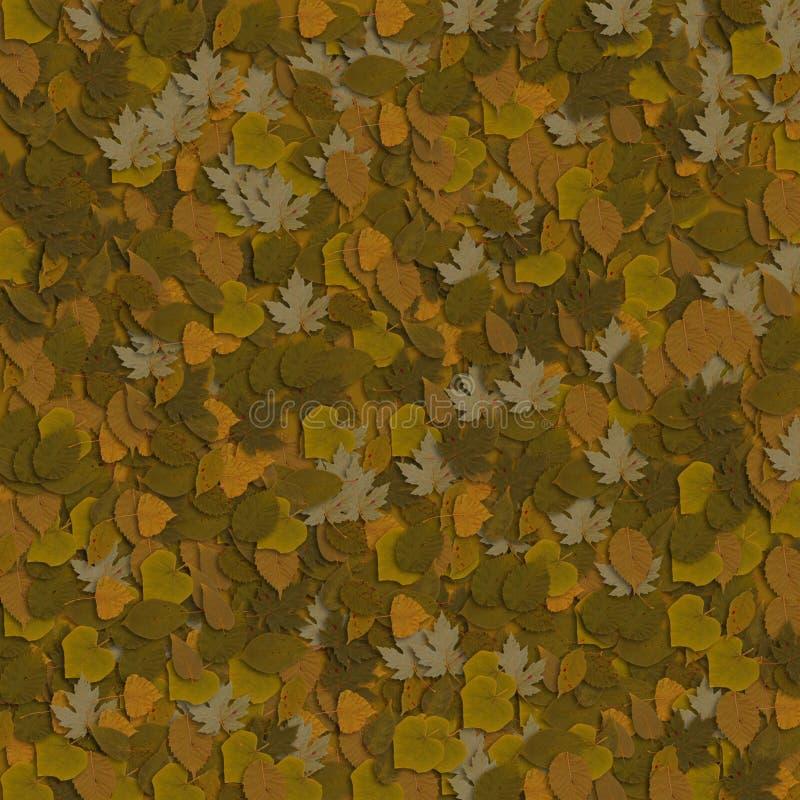 4片棕色叶子 图库摄影