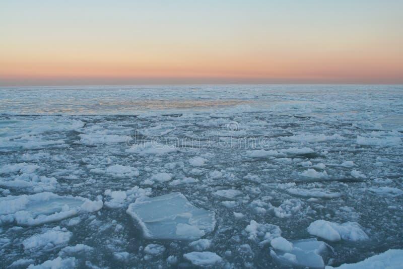4片沙漠冰 库存图片