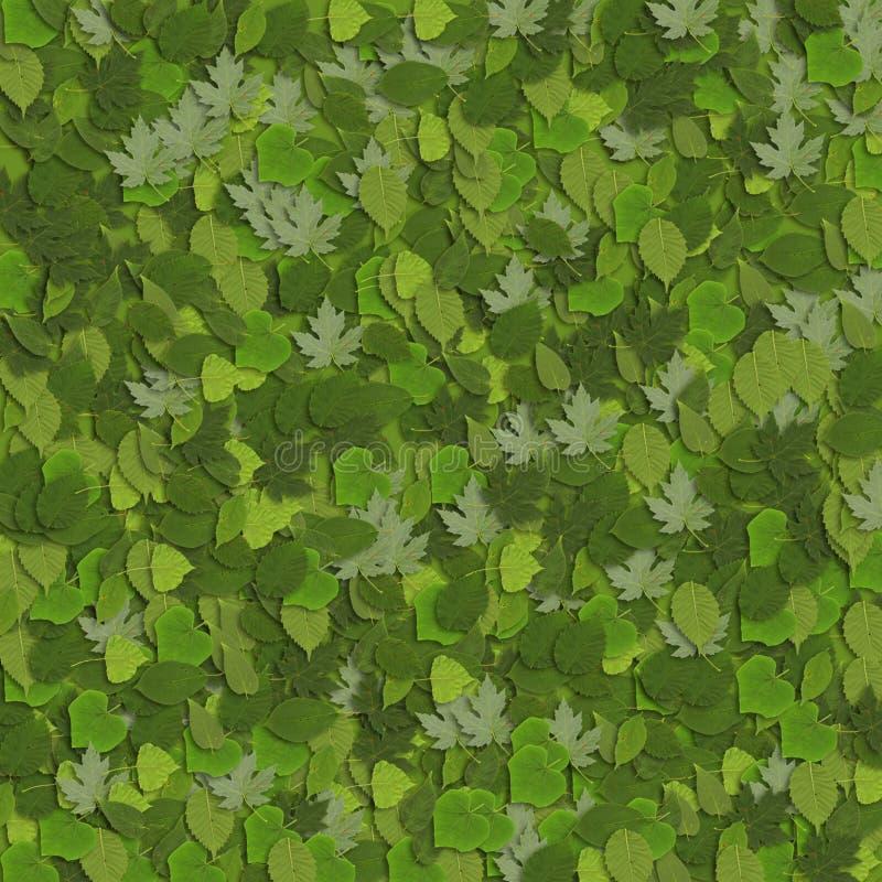 4片绿色叶子 免版税库存图片