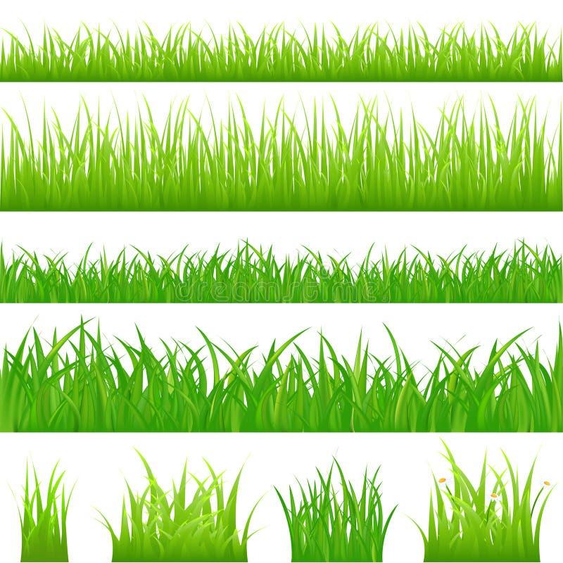 4背景草绿色向量 库存例证