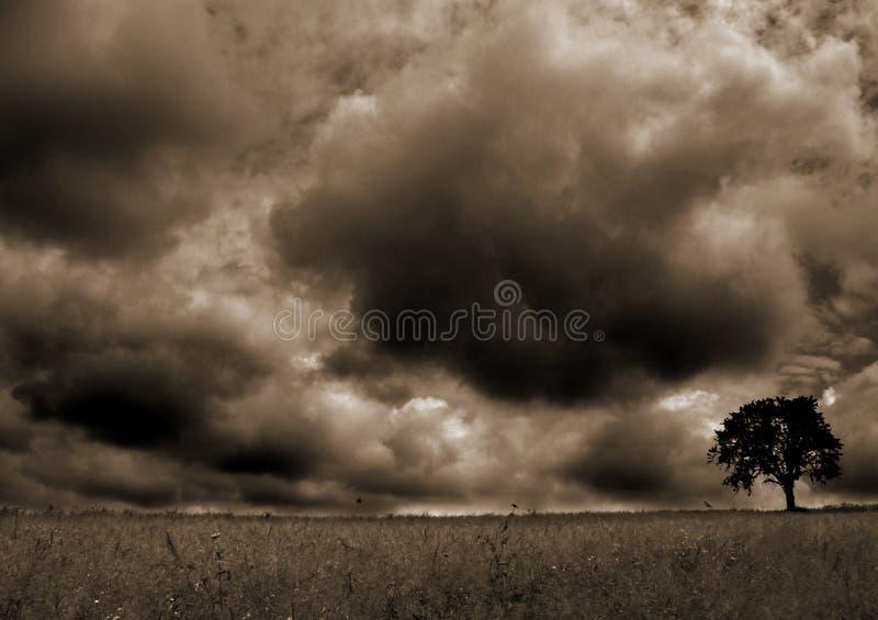 4风暴 库存照片