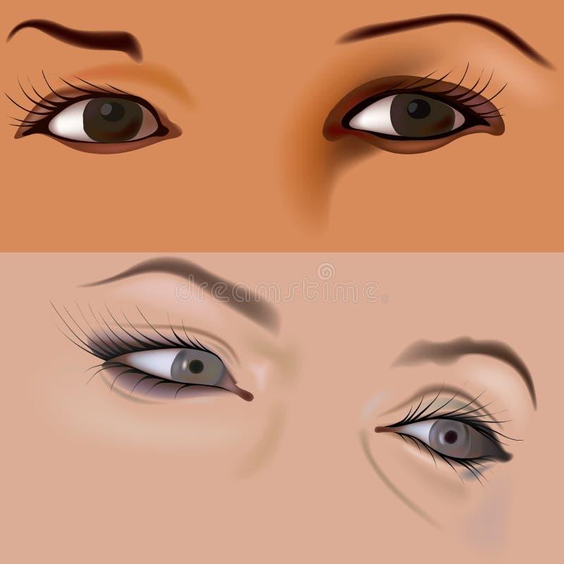 4 ögon vol royaltyfri illustrationer