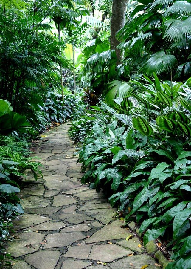 4 ścieżka ogrodowa zdjęcia stock